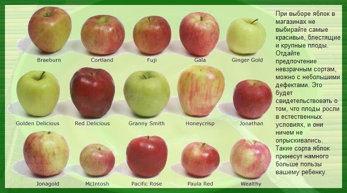 Правильно выбираем яблоки