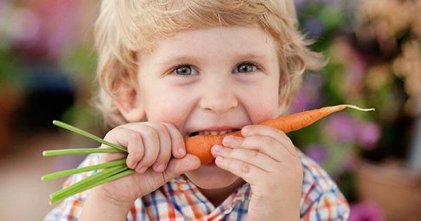 Прикорм морковь со скольки месяцев